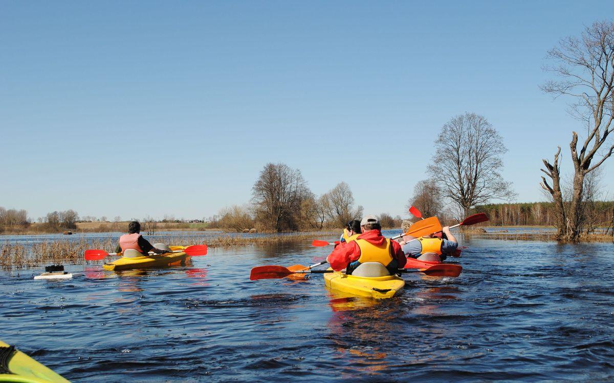 Rozlewiska rzeki Włodawki